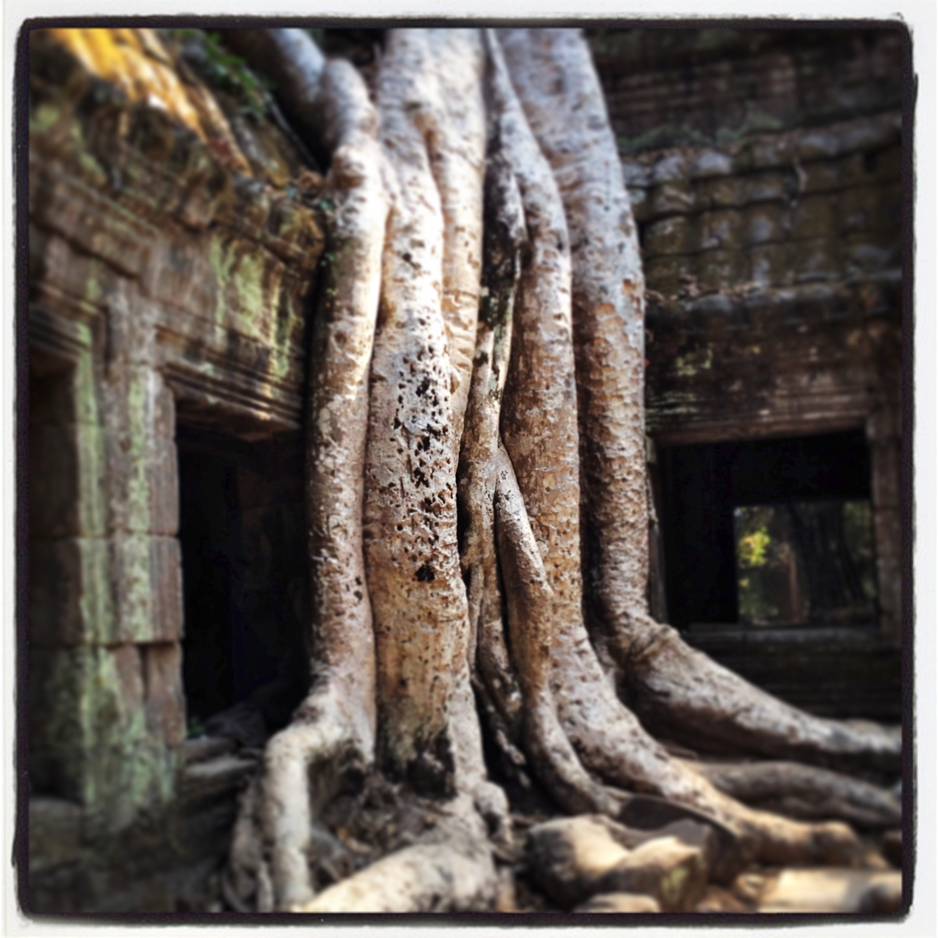 Angkor ghost